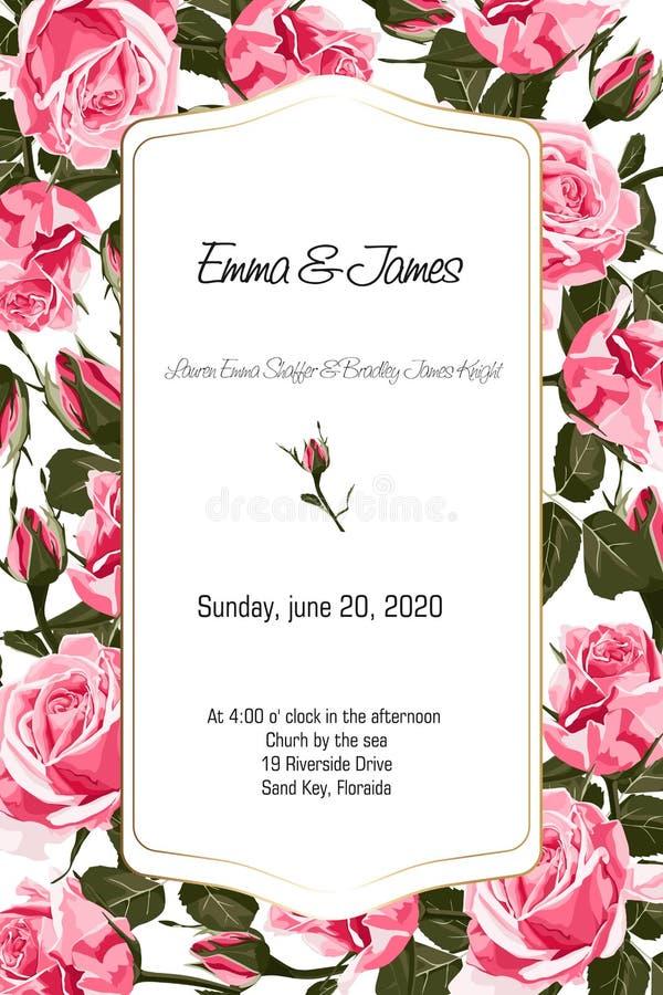 Elegantes florais convidam o projeto do quadro do ouro do cartão: rosas do rosa do estilo do vintage ilustração stock