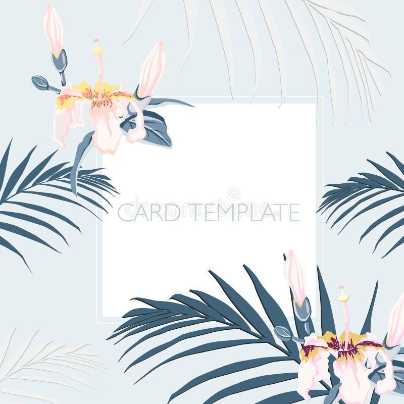 Elegantes florales invitan a diseño de tarjeta: hojas de palma tropicales y flores rosadas del paraíso ilustración del vector