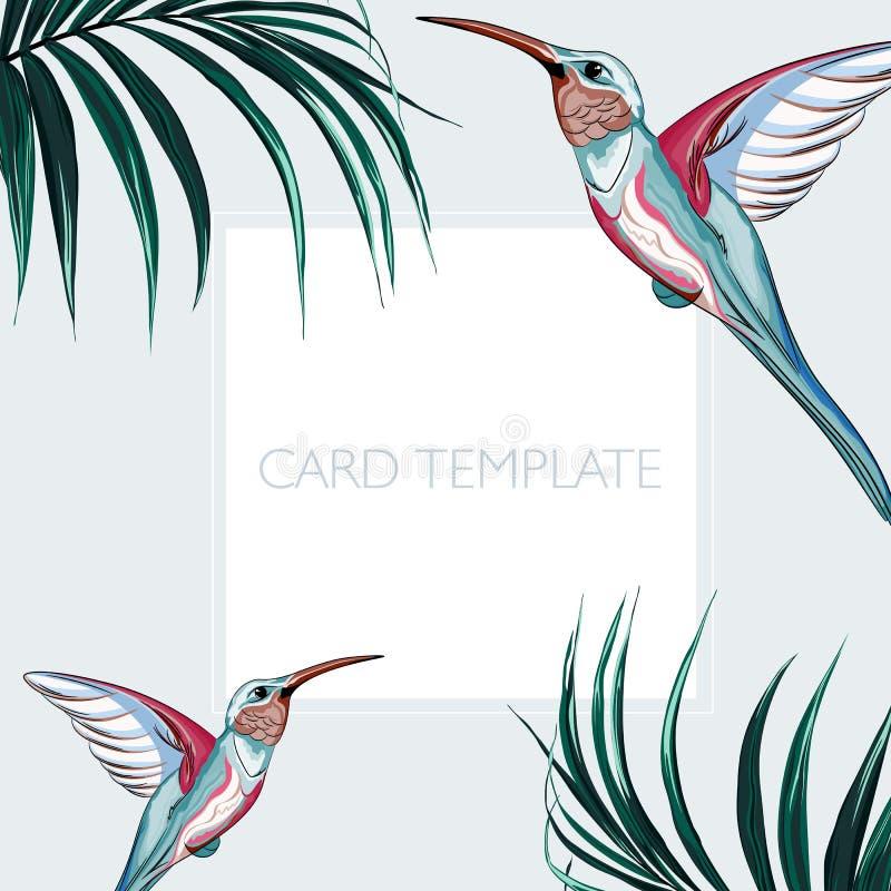 Elegantes florales invitan a diseño de tarjeta: hojas de palma tropicales y pájaros rosados del paraíso ilustración del vector