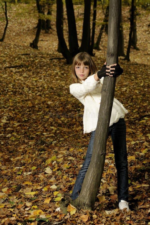 Elegantes Mädchen im Wald lizenzfreie stockfotos