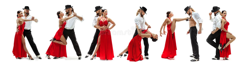Elegantie Latino dansers in actie, die op witte studioachtergrond wordt geïsoleerd royalty-vrije stock afbeeldingen