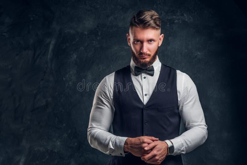 Elegantly skäggig hipster för påklädd i en väst med flugan Studiofoto mot en mörk väggbakgrund royaltyfri fotografi