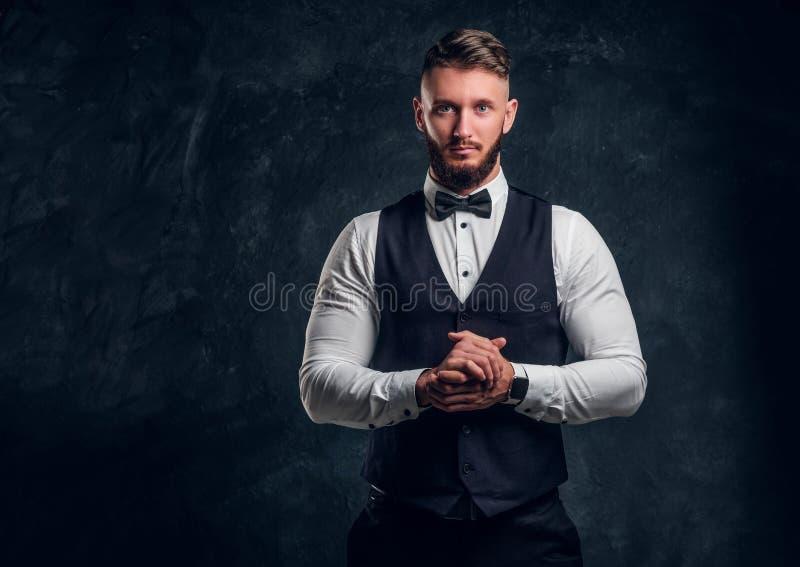 Elegantly skäggig hipster för påklädd i en väst med flugan Studiofoto mot en mörk väggbakgrund royaltyfri foto