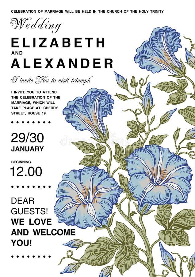 Eleganz romantisches Innersymbol auf einem warmen Hintergrund Schöne Blumen Petunienkarte Feld, Aufkleber vektor abbildung