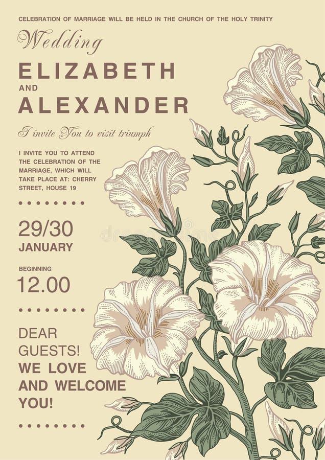 Eleganz romantisches Innersymbol auf einem warmen Hintergrund Schöne Blumen Petunienkarte Feld, Aufkleber Vektor Victorian Illust vektor abbildung