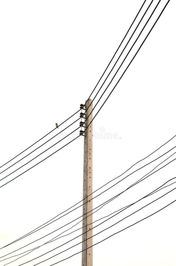Elektriciteitspost op witte achtergrond Geïsoleerde stock foto's