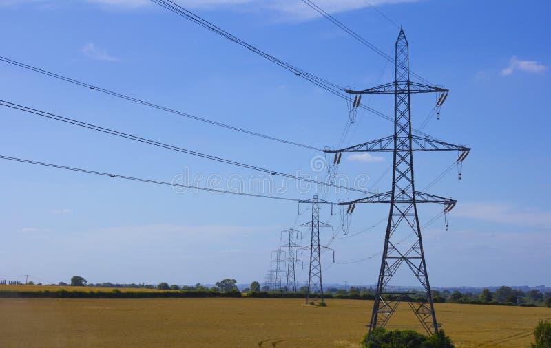 Elektrische Masten auf einem Gebiet stockfotografie