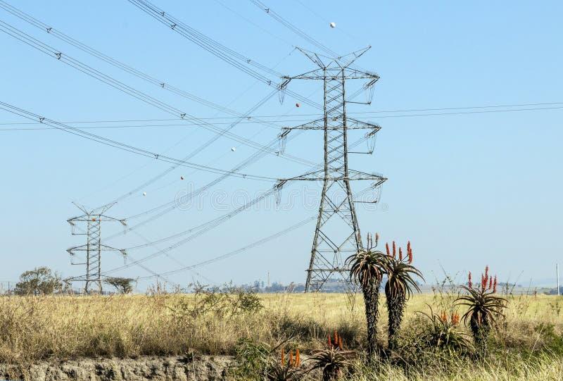 Elektrische Starkstromleitungen und Masten auf Winter-Landschaft lizenzfreies stockbild