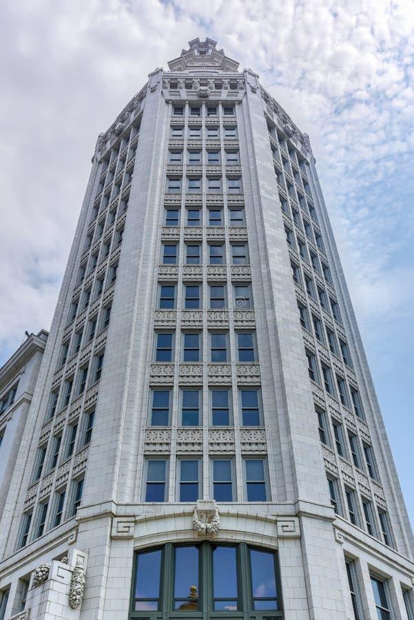 Elektrische Toren - Buffels, New York stock afbeelding