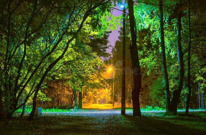 Elektrisk belysning i parkera på natten med lampor med olika färgtemperaturer royaltyfria foton