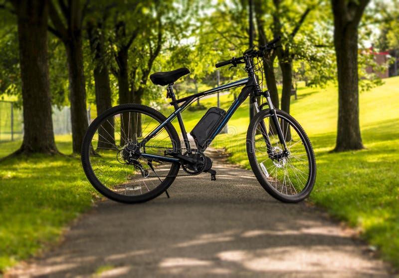 Elektrisk cykel i en parkera på en solig dag royaltyfri bild