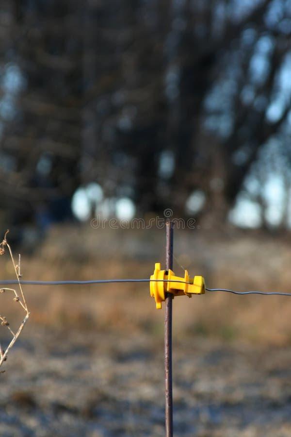 Elektrisk staketStolpe-isolator fotografering för bildbyråer