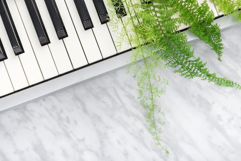 Elektriska pianotangenter och gröna ormbunkesidor arkivfoto