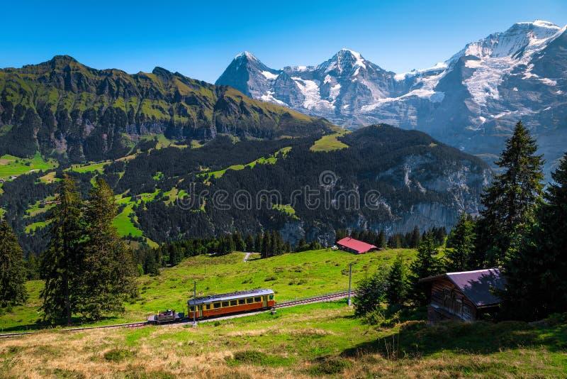 Elektriska turisttåg och snöbergen Jungfrau, Bernese Oberland, Schweiz royaltyfri bild