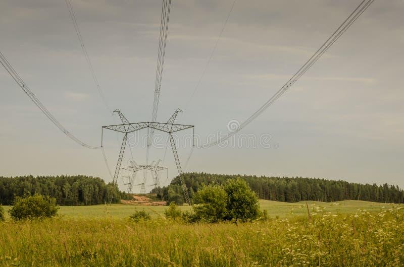 Elektriskt högt spänningstorn/poler av kraftledningar i skogzonen royaltyfri fotografi