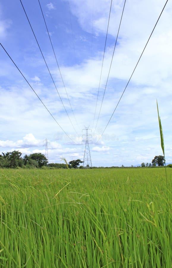 Elektrizitätspfosten stockbild