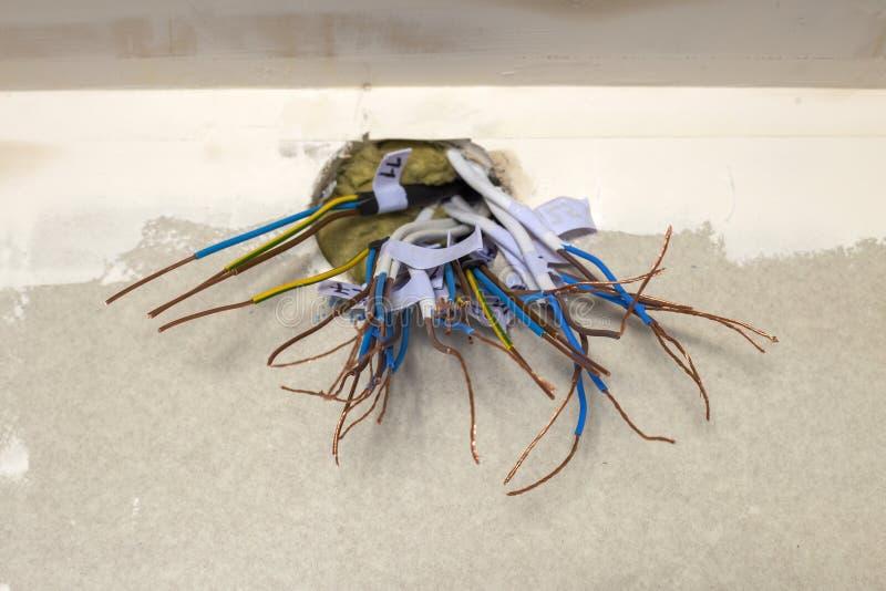 Elektro blootgestelde verbonden draden die van contactdoos op witte muur uitpuilen Elektro bedradingsinstallatie Het eindigen de  stock fotografie