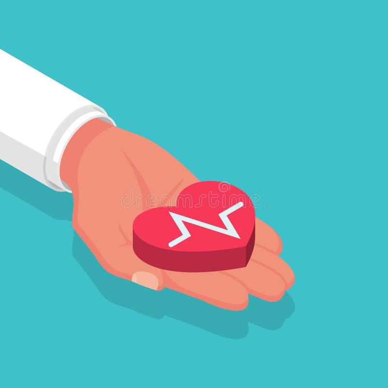 Elektrokardiographiekonzept Kardiologie ECG und EKG Doktor, der in der Hand ein Herz h?lt Roter Herzschlag lizenzfreie abbildung