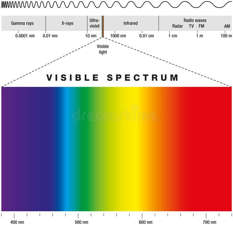 Elektromagnetiskt spektrum vektor illustrationer