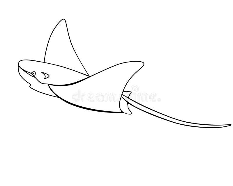 Elektryczna rampa, rampa, manty - ryba, denny zwierzę kontur skat Dr?twa ilustracja wektor