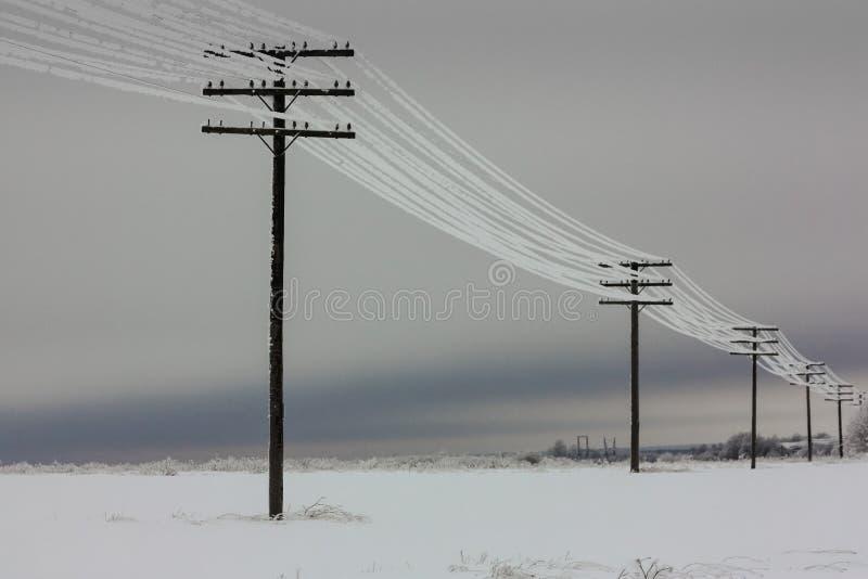 Elektryczne linie energetyczne z hoarfrost na drewnianych elektrycznych słupach na wsi w zimie, zdjęcie stock