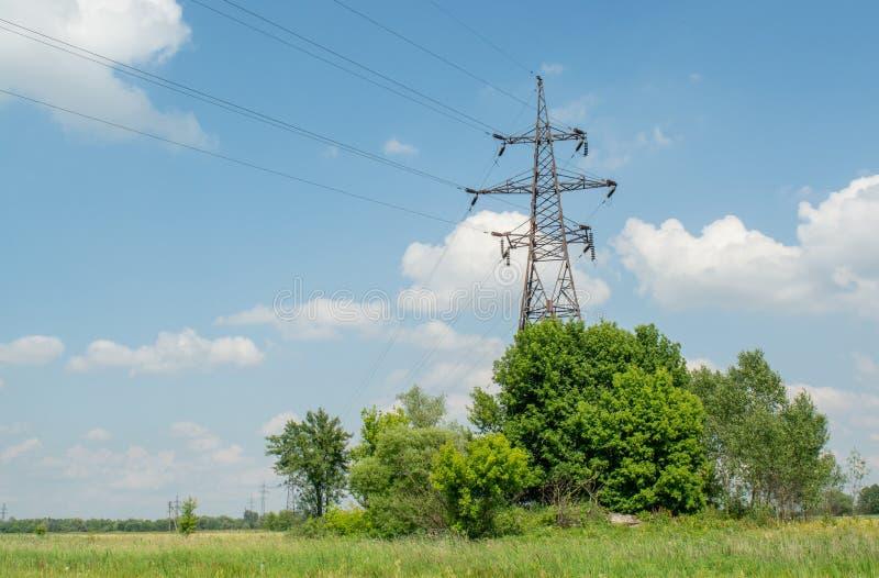 Elektryczni druty górują w polu podczas jaskrawego pogodnego letniego dnia zdjęcia stock