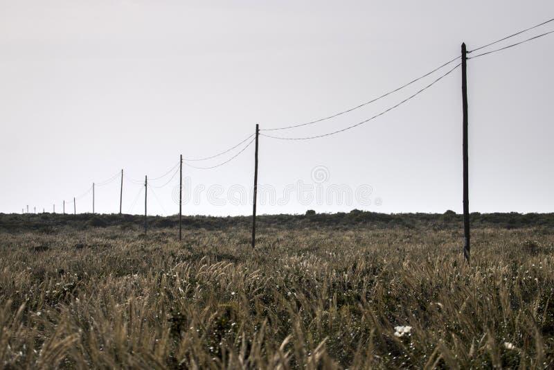 Elektryczność drut na polu zdjęcie stock