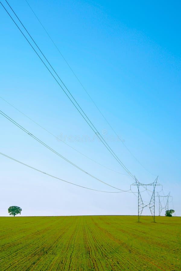 Elektryczny góruje w zielonym polu z niebieskim niebem zdjęcie stock
