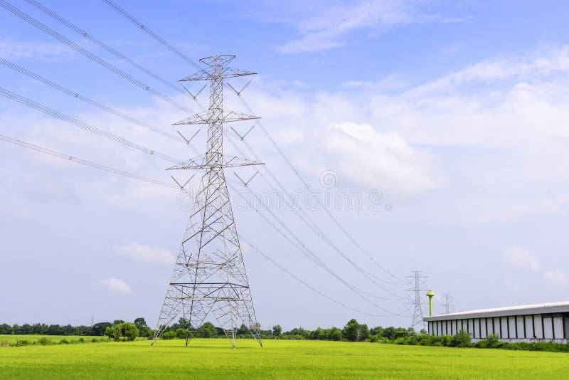 Elektryczny pilon w ryżowym polu fotografia royalty free