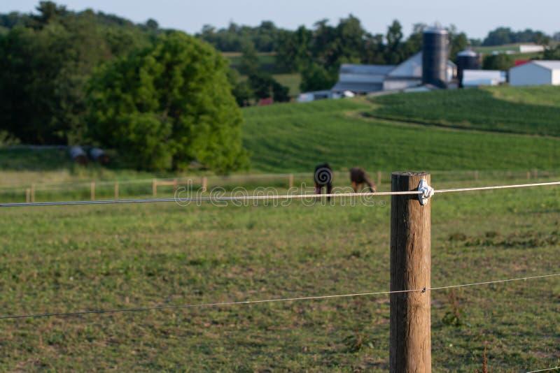 Elektryczny wysoki tensile ogrodzenie zdjęcie royalty free