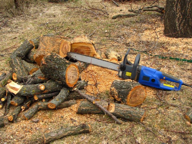 Elektryczny zobaczył jest obok stosu piłujący drzewny bagażnik trociny i obrazy stock