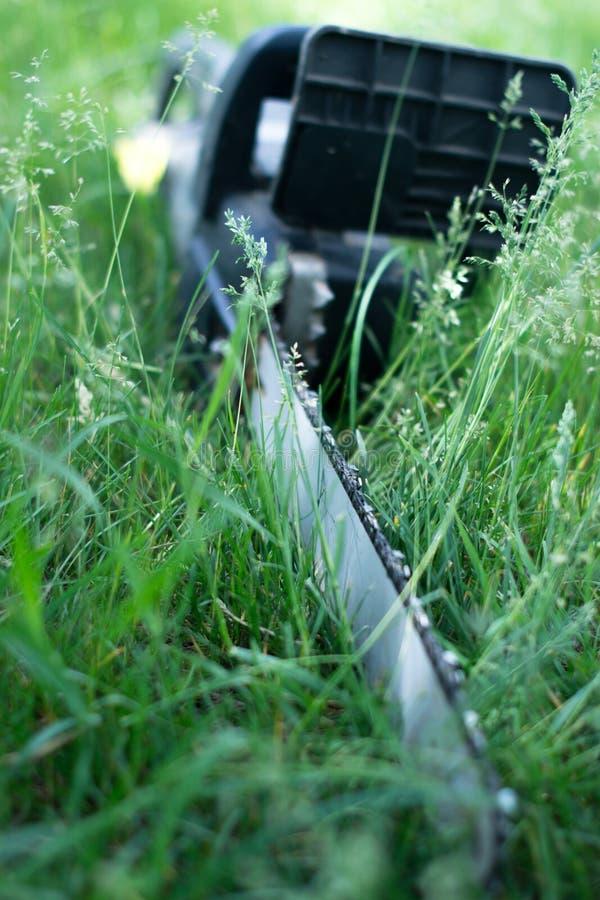 Elektryczny zobaczył na gazon trawie obrazy royalty free