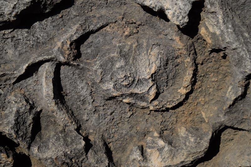 Element brama Hadrian na ziemi blisko bramy Ruiny antyczny zdjęcie royalty free