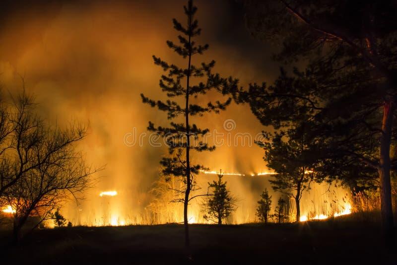 Element van brand stock foto's