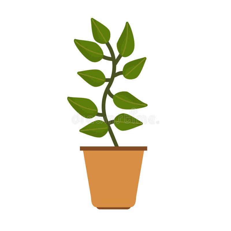 Element-Vektorblumenikone des Blumentopfs im Garten arbeitende dekorative B?ROvase der flachen Illustration des Gr?npflanzehauses stock abbildung