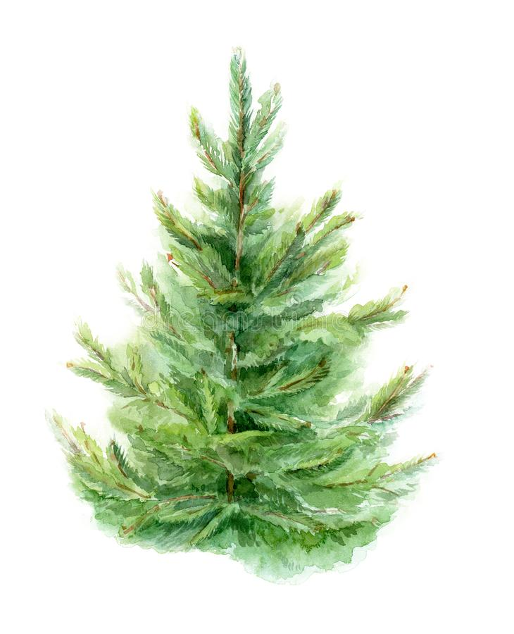 Element of watercolor fir-tree design for cards, posters, Christmas cards. Isolated background. stock illustration