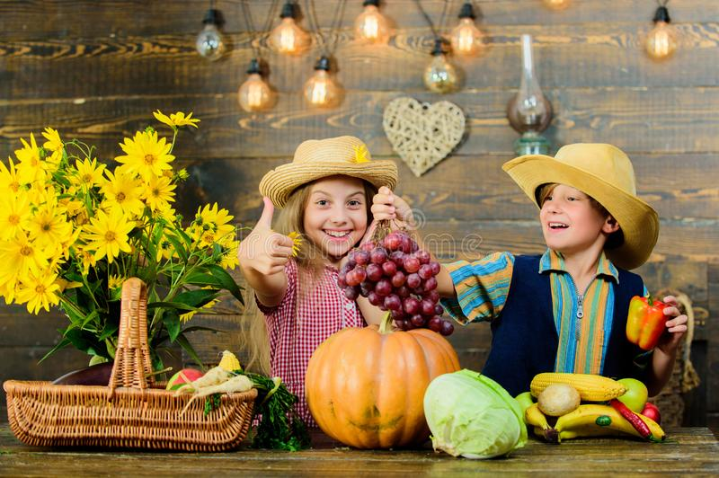 Elementary school fall festival idea. Autumn harvest festival. Children play vegetables pumpkin. Kids girl boy wear royalty free stock image