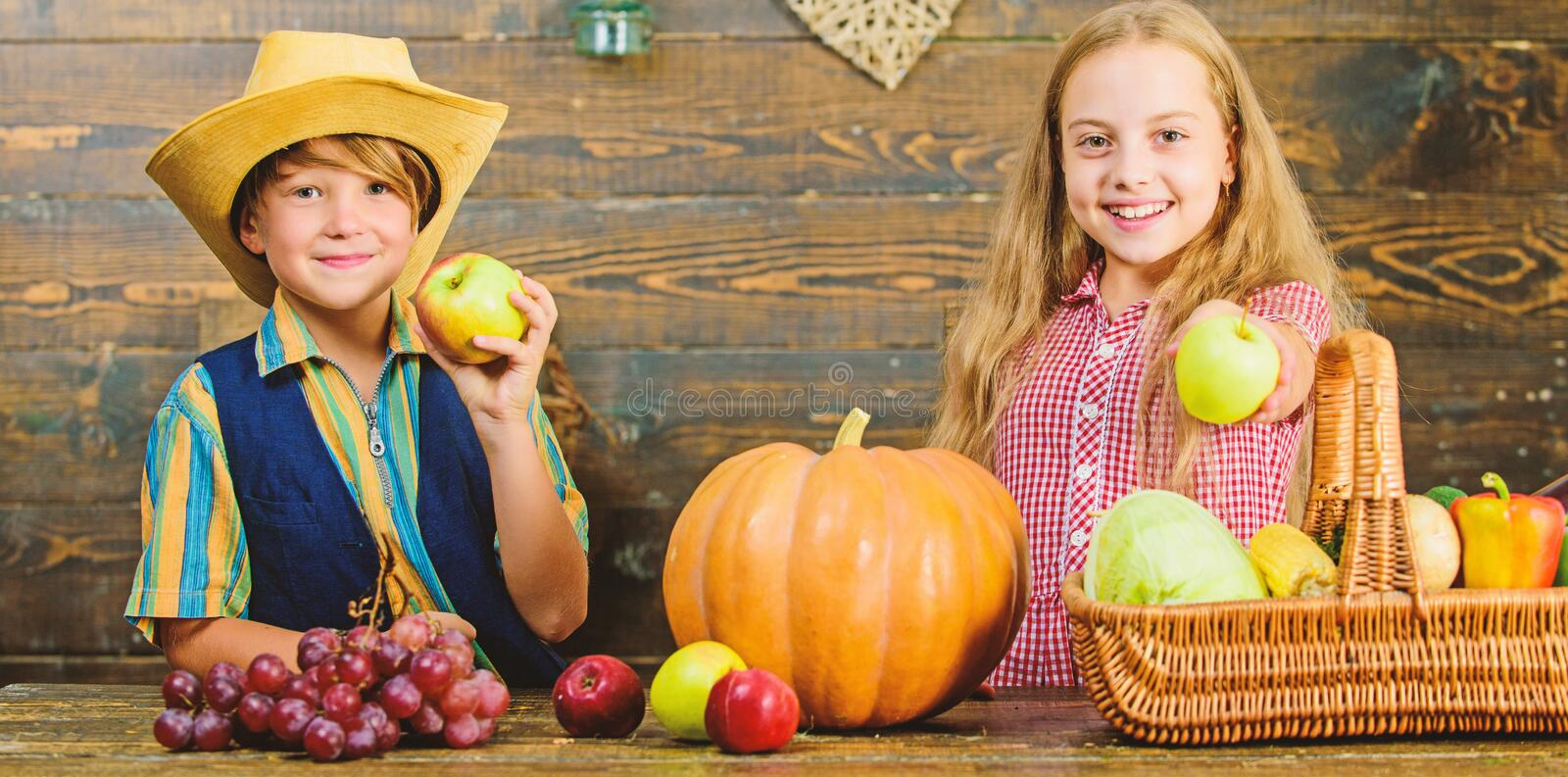 Elementary school fall festival idea. Celebrate harvest festival. Kids girl boy fresh vegetables harvest rustic style royalty free stock images
