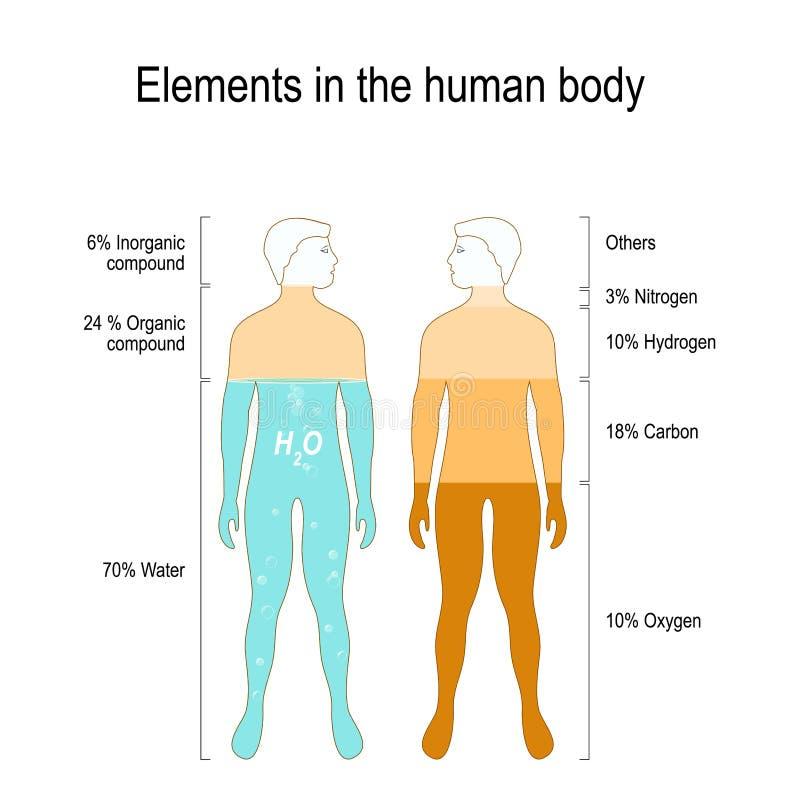 Elemente des menschlichen Körpers stock abbildung