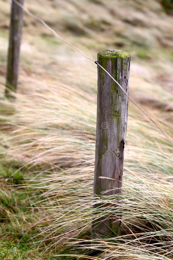 Elemente des Zauns auf dem Strand, Nordholland stockfotografie