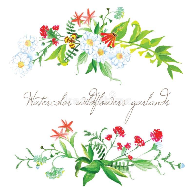 Elementen van het de slingers de vectorontwerp van waterverfwildflowers stock illustratie