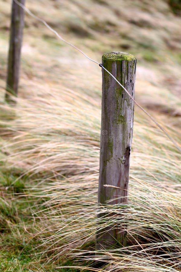 Elementen van omheining op het strand, Noord-Holland stock fotografie