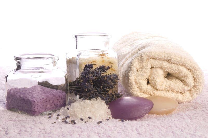 Elementi del bagno della lavanda. fotografia stock