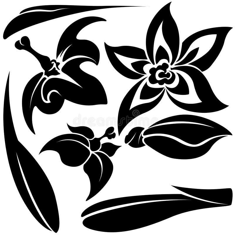 Elementi del fiore illustrazione di stock