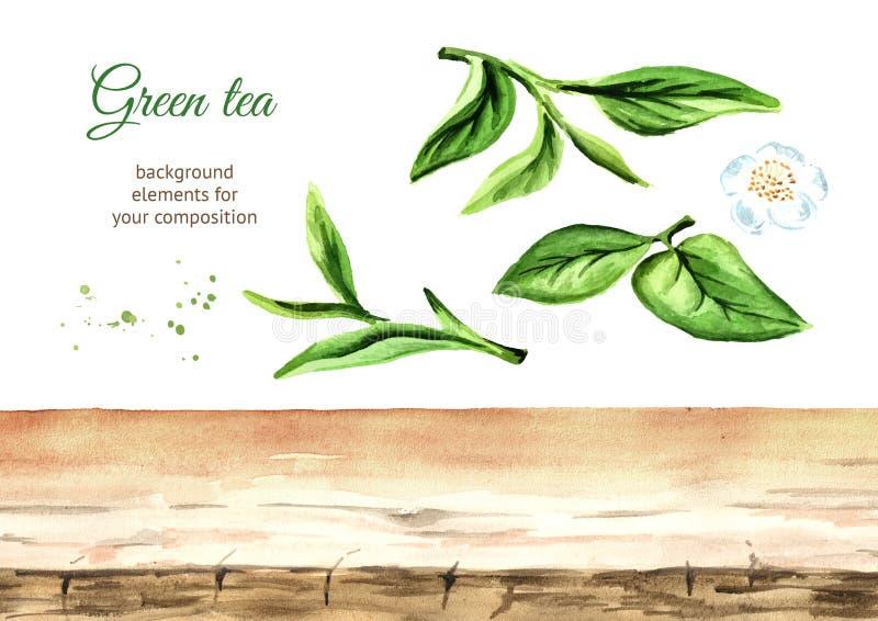 Elementi del fondo del tè Illustrazione disegnata a mano dell'acquerello, isolata su fondo bianco illustrazione vettoriale