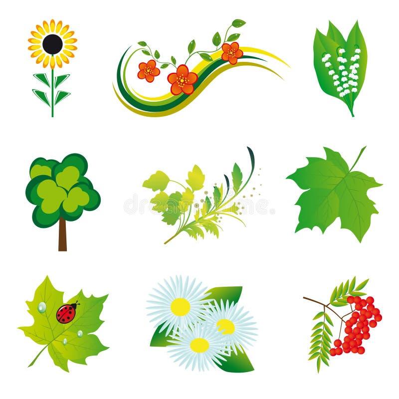 Elementi della natura royalty illustrazione gratis