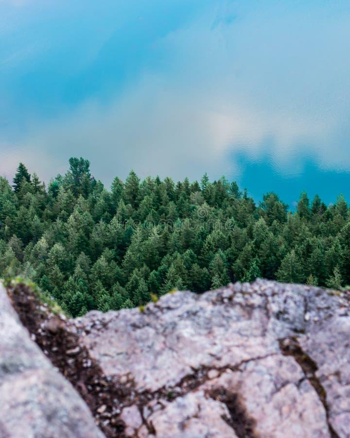 Elementi della natura immagini stock