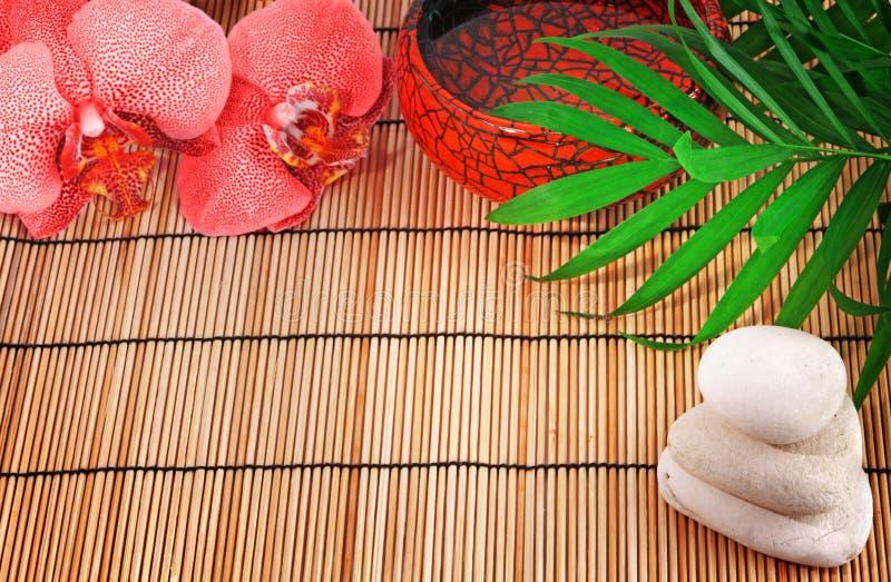 Elementi della stazione termale. Orchidea, pietre, palma, acqua fotografia stock libera da diritti