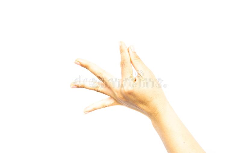 Elementi della tenuta della mano della donna isolati su fondo bianco immagini stock