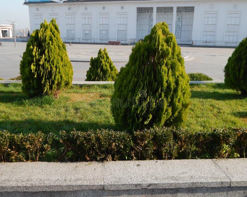 Elementi di architettura del pæsaggio del parco del giardino immagini stock